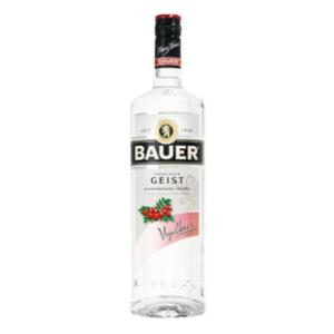 Baurer_geist